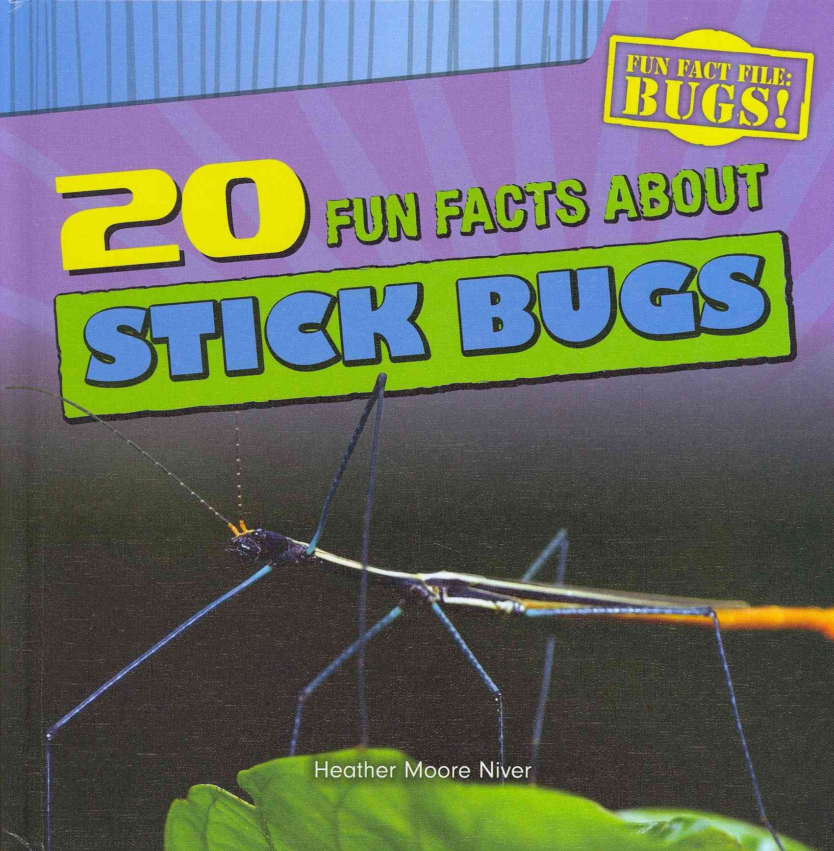 20 Fun Facts About Stick Bugs By Niver, Heather Moore